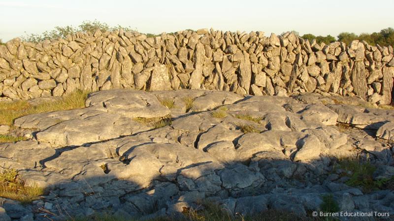 burren_limestone_wall_and_pavement