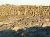 burren_limestone_wall_and_pavement
