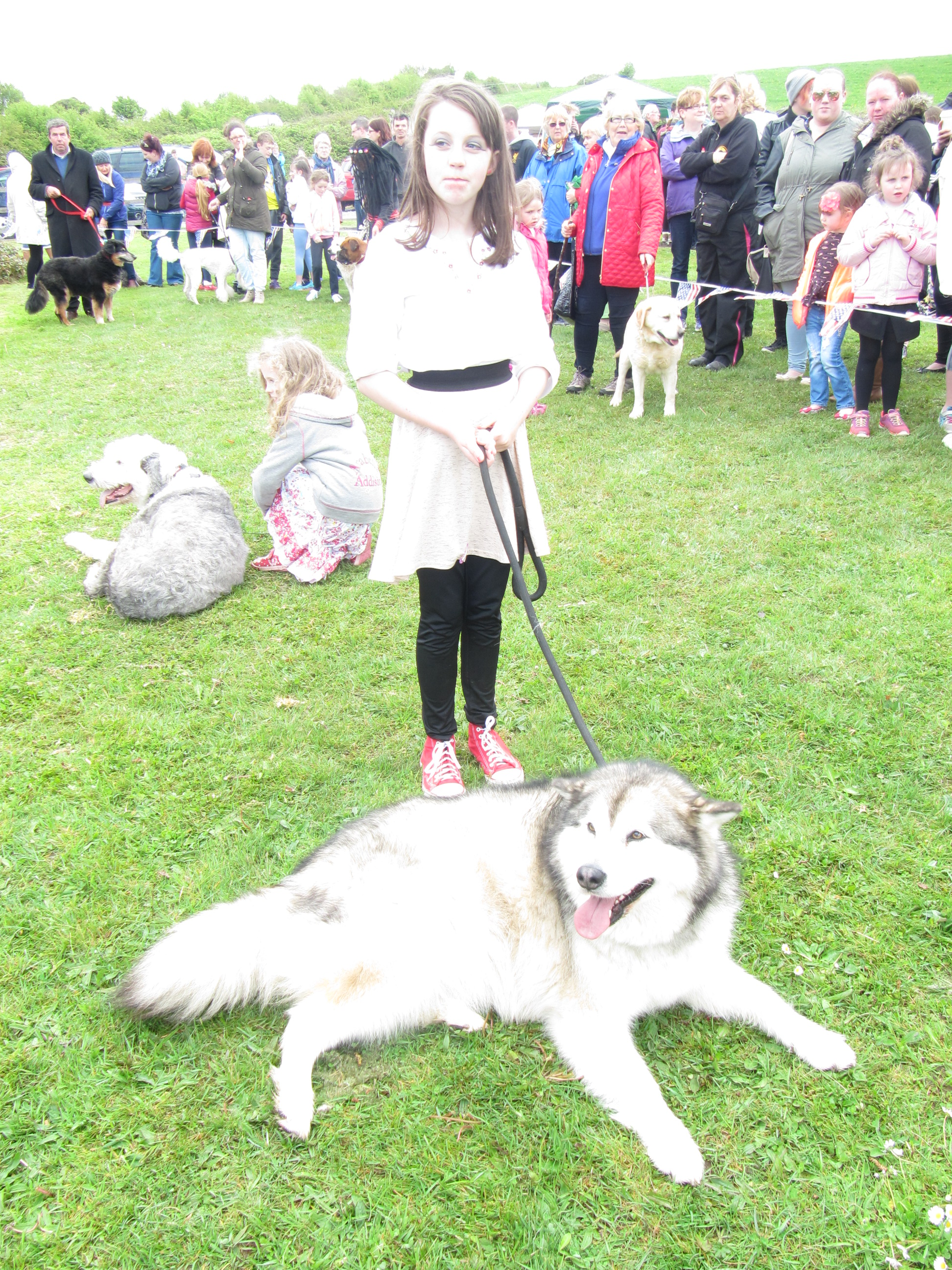 Lark at the Lake Dog Show - Festival of Finn, Corofin, Co Clare